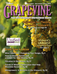 The Grapevine Magazine November/December Issue 2017