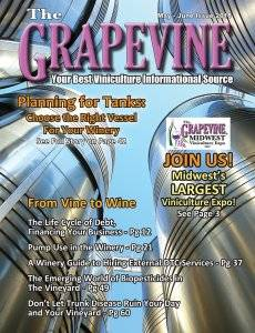 THE GRAPEVINE MAGAZINE MAY JUNE ISSUE 2018