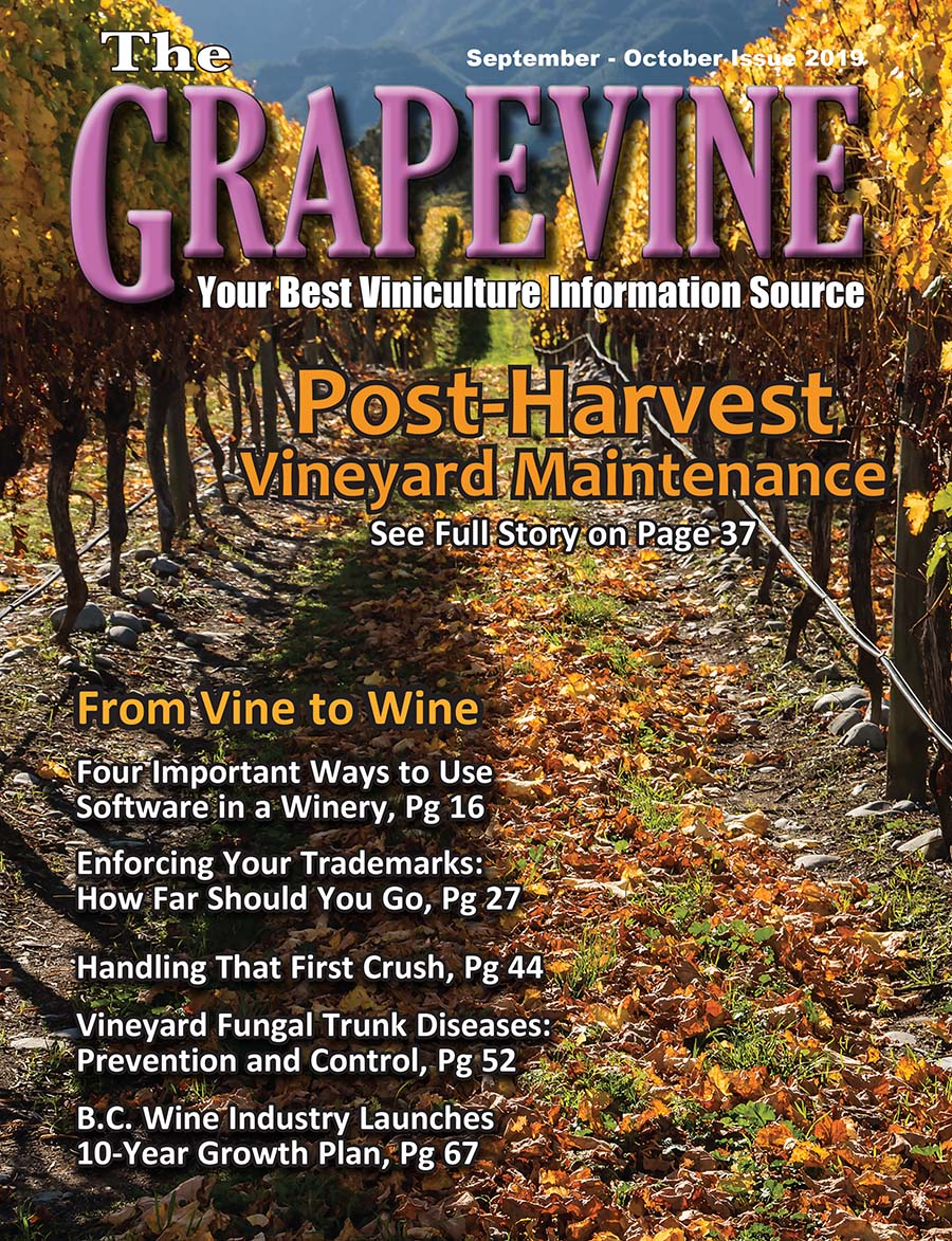THE GRAPEVINE MAGAZINE SEPTEMBER OCTOBER 2019