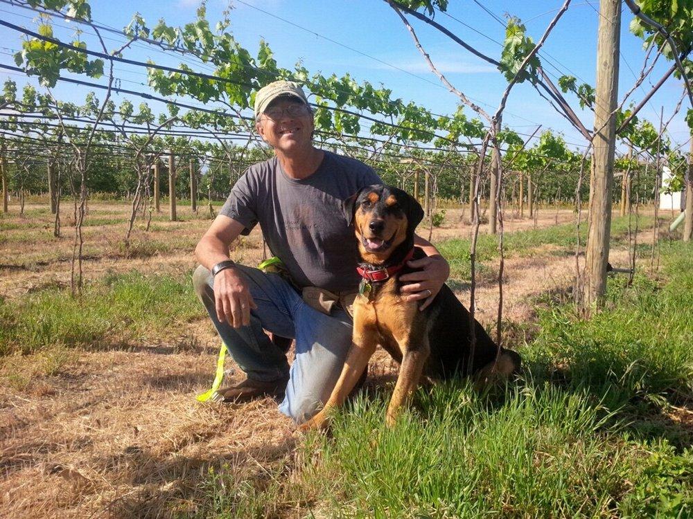 Paradisos del Sol:  An Organic Vineyard Paradise