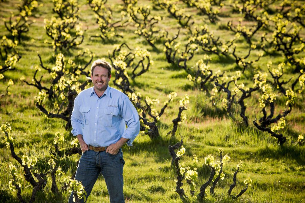 Exploring the Diversity of European Grenache Wine
