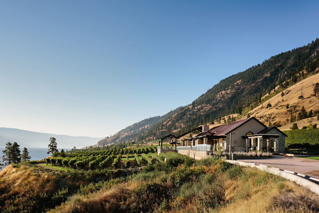 Sustainable Wineries  Attract More Consumers