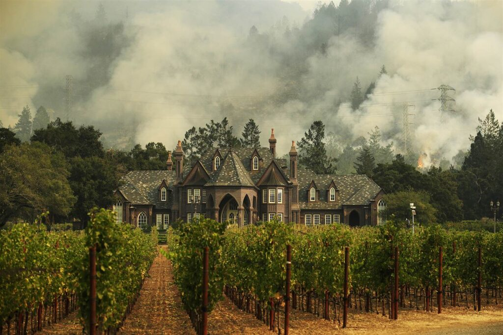 Don't Get Caught Off Guard During Wildfire Season: Tips For Your Winery