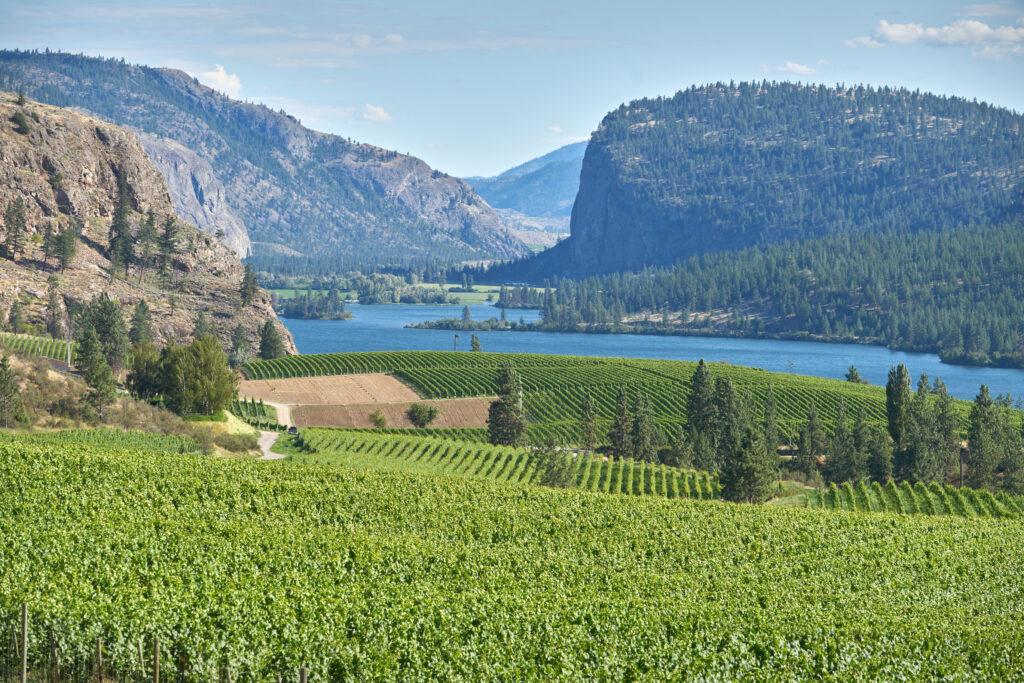 The Okanagan Valley: