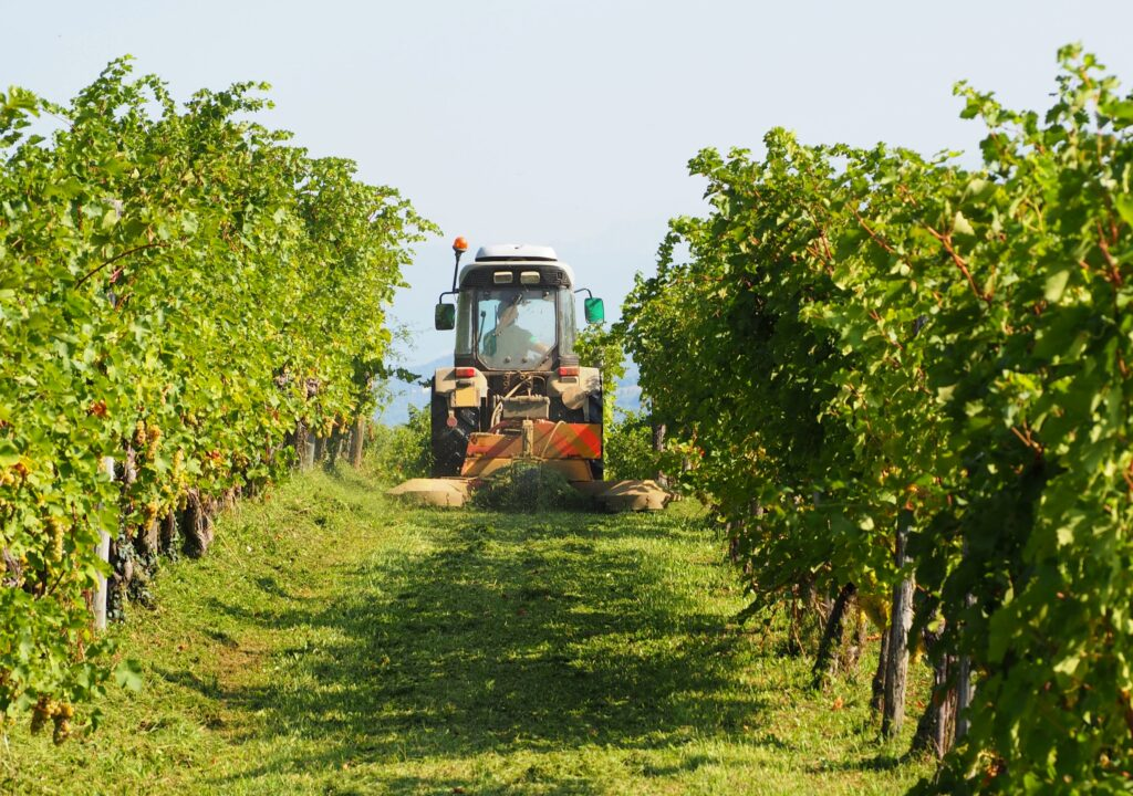 Tow-Behind Equipment for the Vineyard