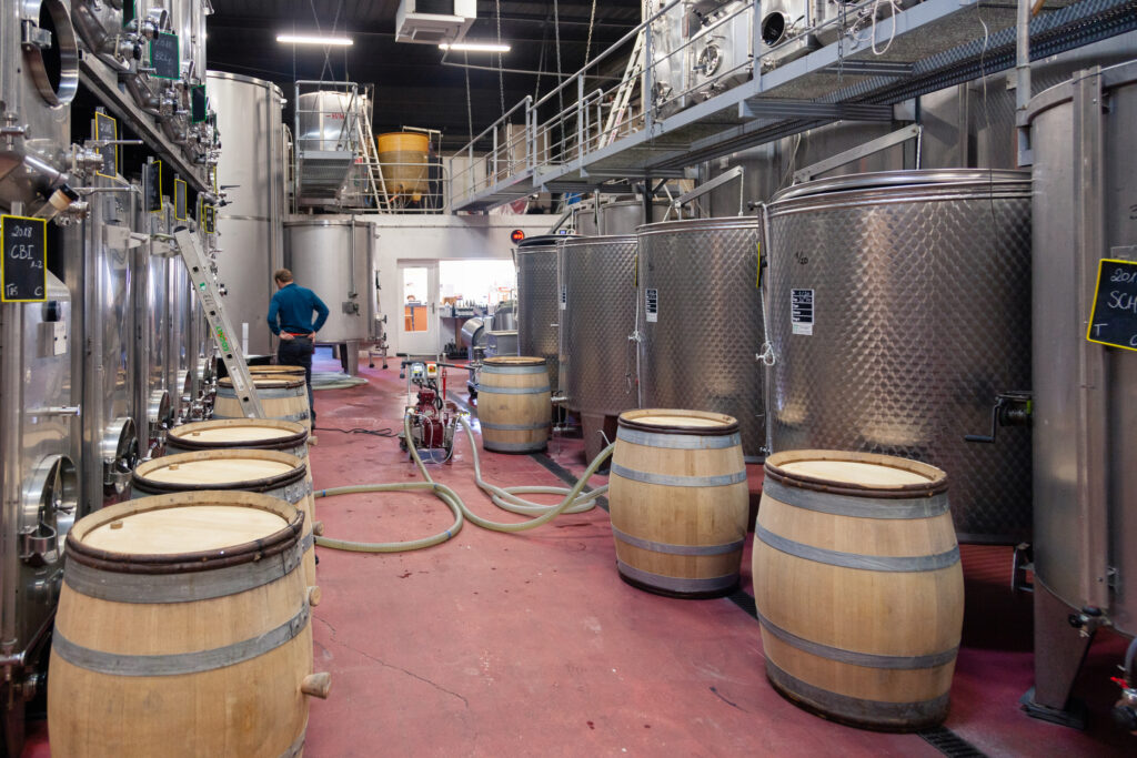 Cross-Contamination and the Winery Cellar