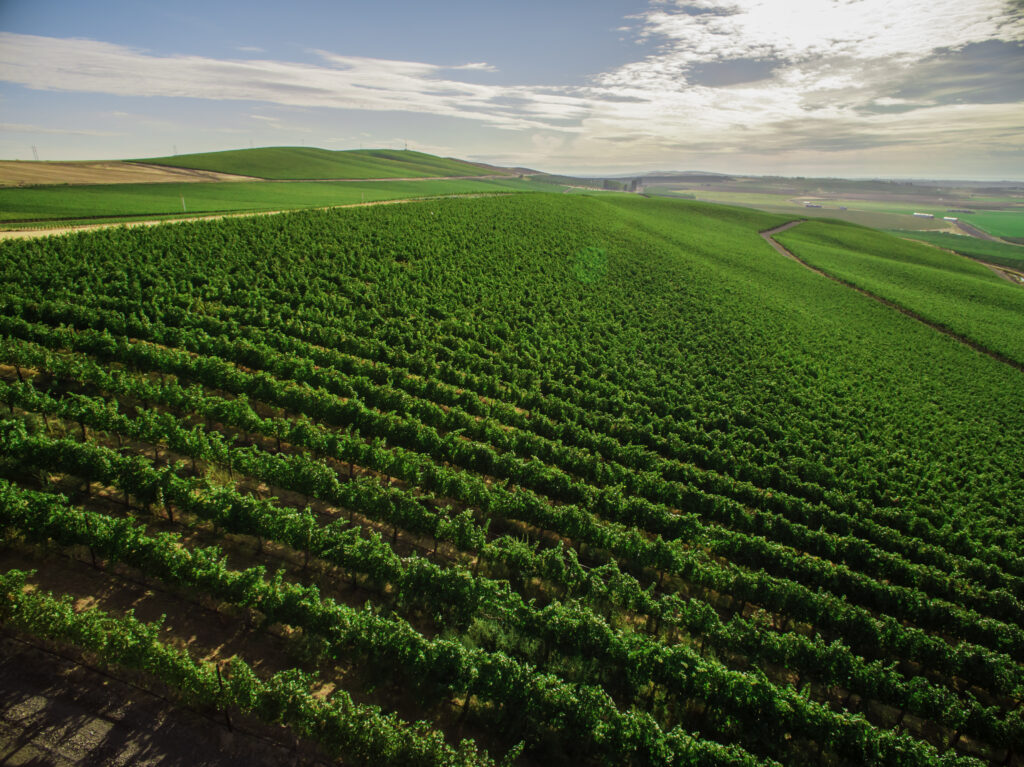 Royal Slope Designated as Washington State's Newest American Viticultural Area